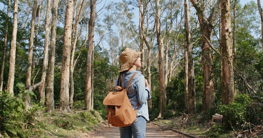 Woman on path between trees